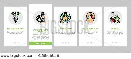 Homeopathy Medicine Onboarding Mobile App Page Screen Vector. Medicaments And Vitamins Prepared From