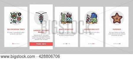 Ocean Underwater Life Onboarding Mobile App Page Screen Vector. Ocean Fish And Star, Jellyfish And T
