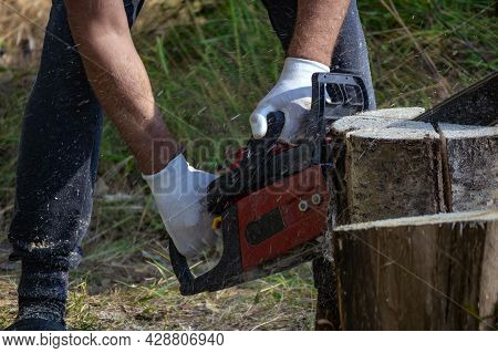 Unrecognizable Male Logger Saws Tree With Hand Held Cordless Chainsaw In Forest. Chainsaw Is In Oper