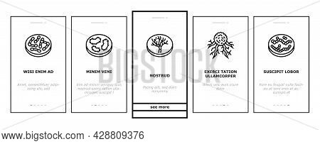Bacteria Infection Onboarding Mobile App Page Screen Vector. Candida Bacteria And Plague, Cancer Cel