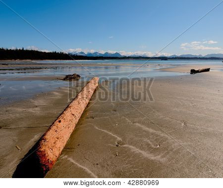 Beach Along Shore With Log