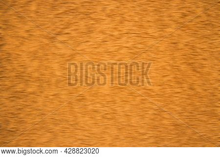 Golden Abstract Fuzzy Wallpaper Background Surface For Some Mock Up Or Pattern Concept With Empty Co