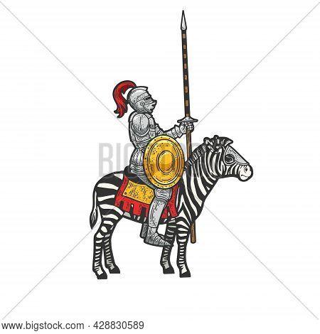 Medieval Knight Riding A Zebra Color Sketch Engraving Vector Illustration. T-shirt Apparel Print Des