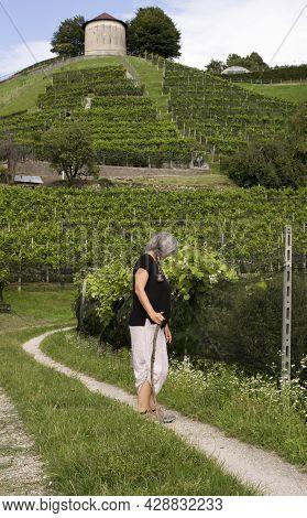 Mature Woman Trekking Along Vineyards In Italian Swiss Region