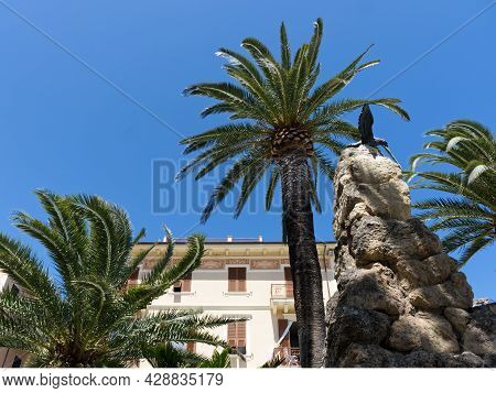 Palm Tree In The Square Of A Typical Ligurian City, An Italian Holiday Resort For Tourists. High Qua
