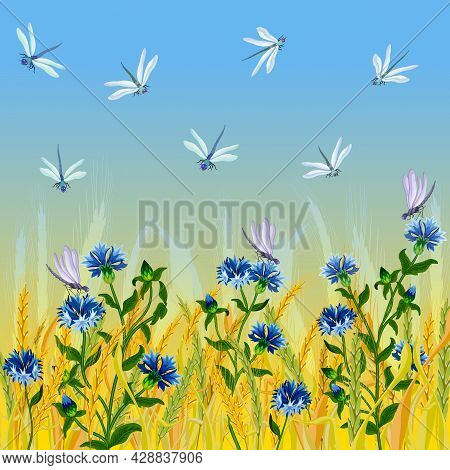 Illustration With Cornflowers And Ears.blue Cornflowers, Dragonflies And Yellow Ears Of Corn On A Co