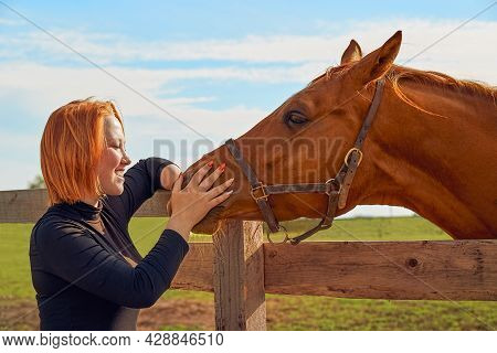 Red-haired Girl Stroking Horse In Paddock On A Summer Sunny Day