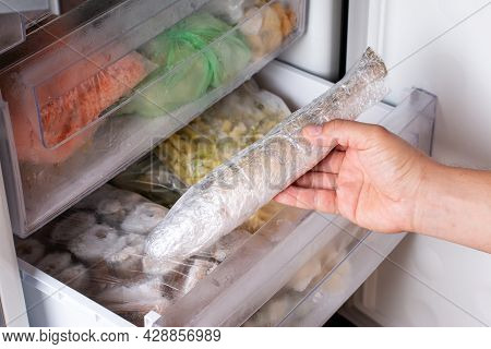 Man Takes Out Frozen Fish From The Freezer. Frozen Fish. Frozen Food