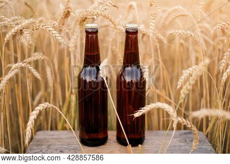 Two Bottles Of Dark Beer Are Standing In A Field Among The Grain Crops Of Barley And Rye. Refreshing
