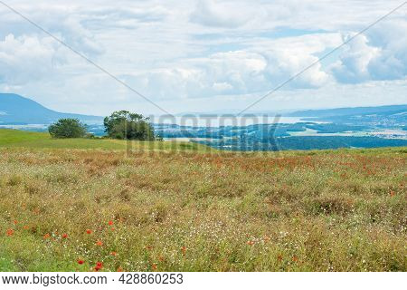View From The Swiss Jura Mountains Over A Corn Field With Poppies Towards The Midland With Lake Neuc