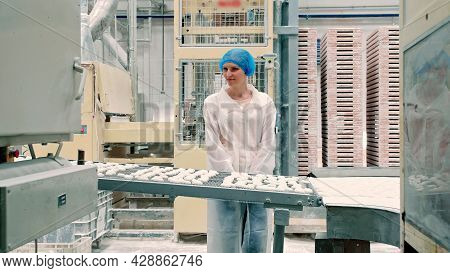 Candy Factory. Controller Checking Conveyor With Candies. Young Woman In Uniform Holding Folder And