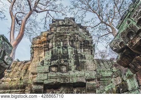Cambodia Angkor Wat Ta Prohm Temple Tomb Raider Tree Roots Ruins. Angkor Temples Ta Prohm. Siem Reap
