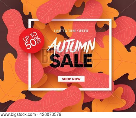 Autumn Sale Vector Banner Design. Fall Season Shopping Limited Time Offer Text With Maple And Oak Le