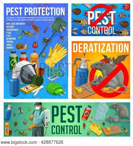 Pest Control Vector Disinsection And Deratization Service. Insect Extermination Control At Home With