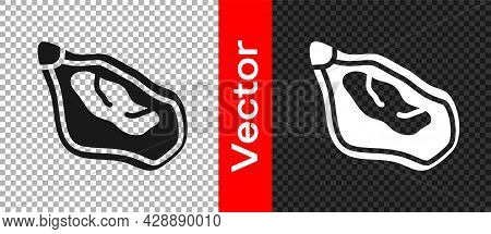 Black Mussel Icon Isolated On Transparent Background. Fresh Delicious Seafood. Vector