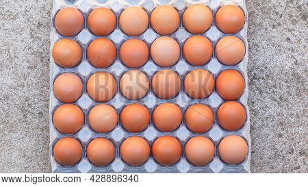 Eggs Thirty On Cardboard Tray Overhead Closeup On Concrete Floor Background Photo Image.