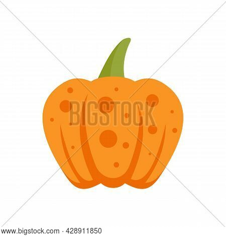 Thanksgiving Pumpkin Icon. Flat Illustration Of Thanksgiving Pumpkin Vector Icon Isolated On White B