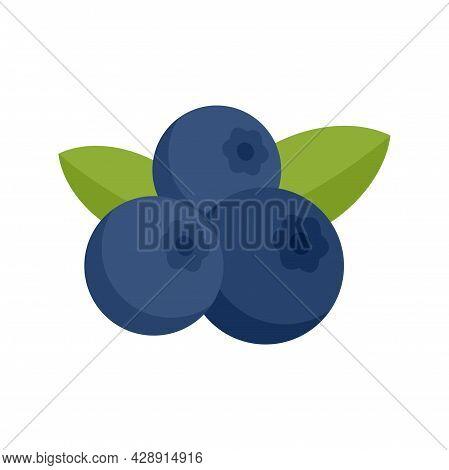 Superfood Blueberry Icon. Flat Illustration Of Superfood Blueberry Vector Icon Isolated On White Bac