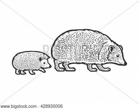 Mother Hedgehog With Cub Baby Sketch Engraving Vector Illustration. T-shirt Apparel Print Design. Sc
