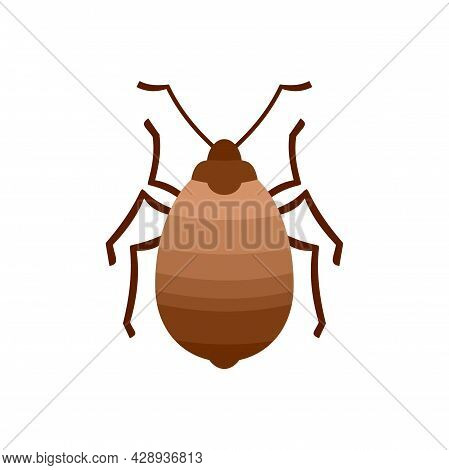 Bug Insect Icon. Flat Illustration Of Bug Insect Vector Icon Isolated On White Background