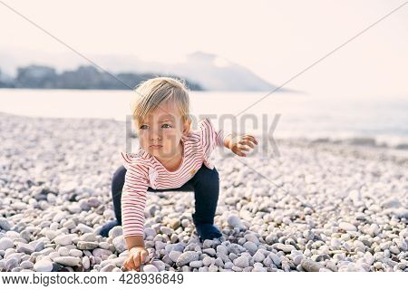 Little Girl Squatted Down And Reached For A Pebble On A Pebble Beach