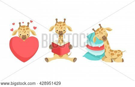 Cute Spotted Baby Giraffe With Long Neck Sleeping On Pillow And Reading Book Vector Set