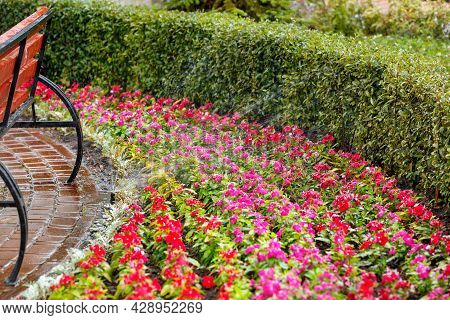 An Automatic Irrigation System Irrigates A Beautiful Bright Flower Garden Behind A Wooden Bench In T
