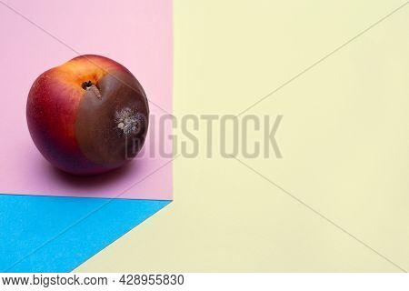 Spoiled Food. Rotten Nectarine On A Colored Background. Mold On Food Leftovers. Copy Space. Place Fo