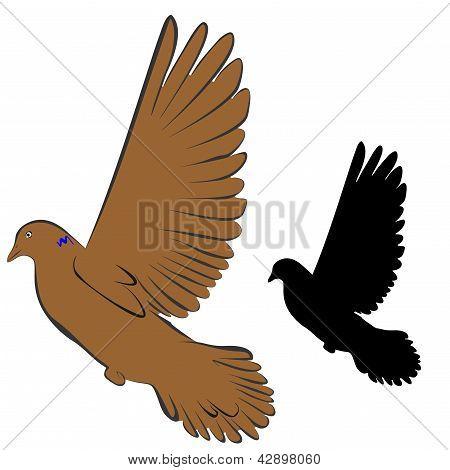 Pigeons (1-re)2-5.eps