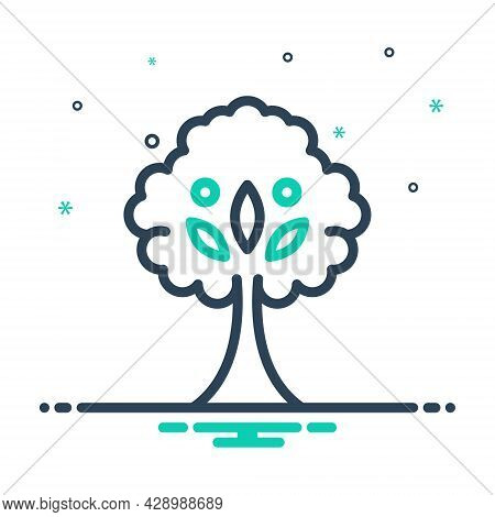 Mix Icon For Tree Plant  Foliage Greenstuff Sapling Seedling Timber Ecology Nature