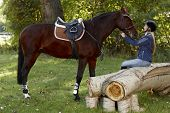 Horse and pretty female rider taking a break in the woods. poster