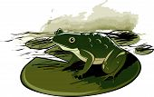 Frog Sitting On Water Lily Leaf editable vector illustration poster