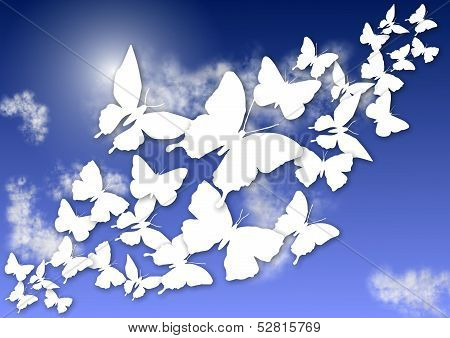 Butterflies And Sky
