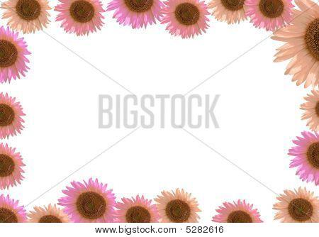 Sunflower Frame Border