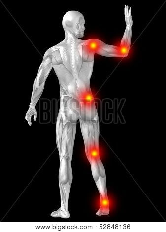 3D human or man with muscles for anatomy or health designs with articular or bones pain. A male isolated on black background poster