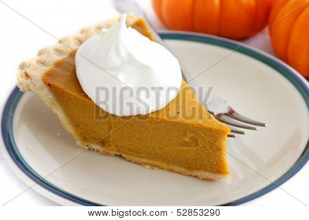 Pumpkin custard pie slice with whipped cream topping.