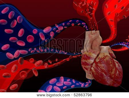 Heart on a background with blood cells