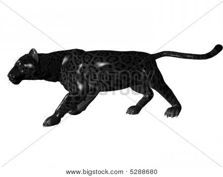 3D rendered image of Black panther on white background an isolated poster