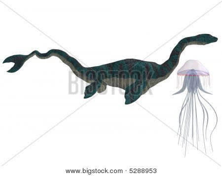 Sea Serpent And Jellyfish