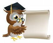 Illustration of a cute owl character in professor's or teacher's mortar board pointing at a scroll document perhaps a certificate diploma or other qualification or just an announcement. poster