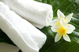 Towels On Green Leaf