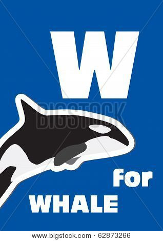 W For The Whale, An Animal Alphabet For The Kids