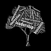 Leadership word cloud conceptual image poster