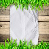 crumpled paper on Green grass with wooden board and copyspace for text poster