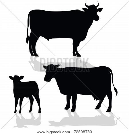 Cow Family Silhouette with Shadow
