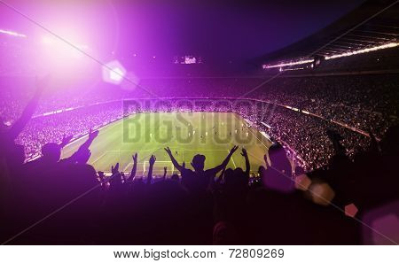 excited people in a stadium