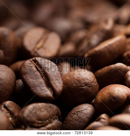 Roasted Coffee Grain