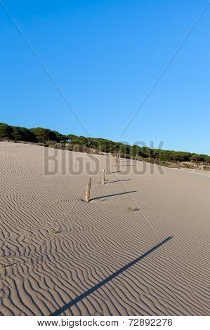 Geometric Patterns In Sand At  Beach