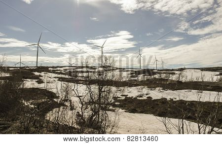 wind turbines on north Sweden