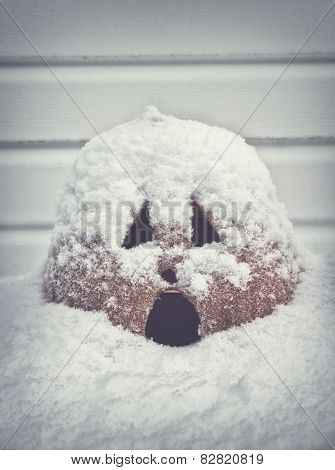 Screaming Jack O Lantern Covered In Snow